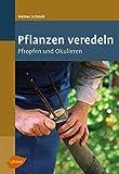 Pflanzen veredeln: Pfropfen und Okulieren