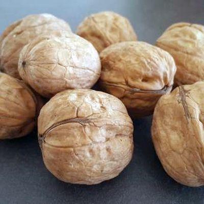 Walnussbaum veredeln: Tipps zur Verbesserung der Qualität der Walnussernte